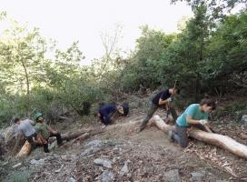 Durant una setmana els voluntaris i voluntàries aprenen criteris tècnics per la conservació dels boscos