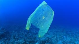 Bossa de plàstic al mar.