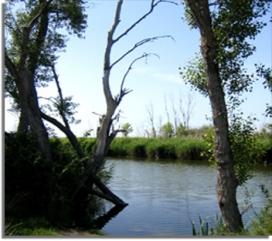 Ico organitza cursos flash en diferents indrets del territori, com al camí natural del Segre Zona Humida d'Utxesa, al Segrià