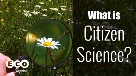 Enguany el premi està dedicat a la ciència ciutadana