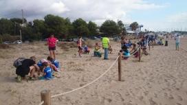 Voluntariat ambientals per la recuperació de les dunes de la Platja LLarga de Tarragona amb l'Associació Aurora i Decathlon