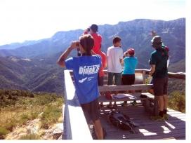 Seguiment de fauna amb el camp de treball amb l'Associació La Sorellona