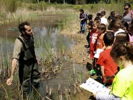La Fundació Emys planteja un projecte per la recuperació de l'hàbitat per als amfibis
