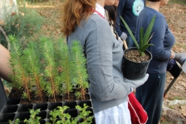 Treballadors i treballadores de Esteve participant en una jornada de voluntariat amb l'Associació Sèlvans