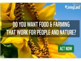 La campanya Living Land recull signatures per una Política Agrícola Europea més sostenible