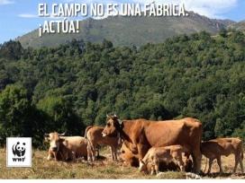 Les entitats critiquen que la PAC ha promogut l'agricultura industrial