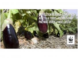 El model d'agricultura definit per la PAC impacta sobre l'alimentació, la salut i el mediambient.