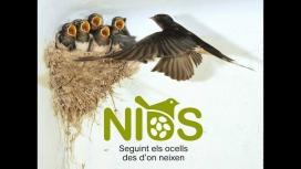 El registre de dades es realitza durant la nidificació, del 23 d'abril al 31 de maig