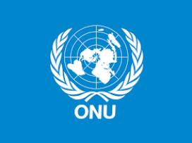 Logo de l'ONU.