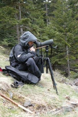 Els voluntaris i les voluntàries poden col·laborar en el seguiment de rastres de l'ós