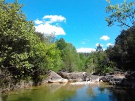 La creació de l'Agència de la Natura ha estat pendent a Catalunya des de fa molts anys