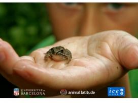 Posgrat sobre Coneixement del món animal