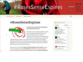 La campanya #RosesSenseEspines de la Societat Catalana d'Educació Ambiental vol donar visibilitat a la problemàtica i oferir alternatives a les persones que volen regalar una rosa per Sant Jordi