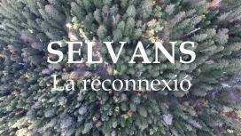 El documental Sèlvans es va presentar en la passada edició del Festival de Cinema  de Medi Ambient Ficma