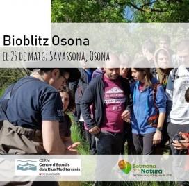 Es pot participar a activitats de descoberta, de conscienciació o de voluntariat ambiental