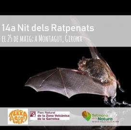 La Setmana de la Natura se celebra els dies previs al 5 de juny, dia mundial del medi ambient