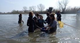 La Sorellona organitza una jornada al riu Ter de descoberta i voluntariat