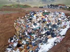 La reducció i el reciclatge dels residus són bàsics per avançar en la preservació de l'ecosistema