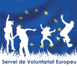 Servei de Voluntariat Europeu. Font: Ajuntament de Banyoles