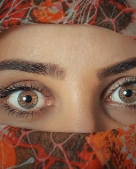 Curs 'Entre dones: mirades i veus del conflicte social del món actual'. Font: Pixabay