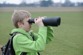 El Premi Joventut dóna reconeixement a una tesi o treball de final de carrera o màster - Foto: Pixabay