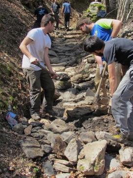 L'associació Boscos de Muntanya també organitza estades a Suïssa, Àustria, Alemanya i Ucraïna