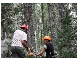 A través de la vivència els voluntaris i voluntàries entenen el valors del bosc (imatge: projecteboscos.cat)