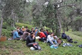 Les estades representen una immersó al bosc, per dormir, menjar i treballar en la millora (imatge: projecteboscos.cat)