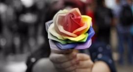 Una rosa amb els colors de l'arc de Sant Martí. Font: Twitter