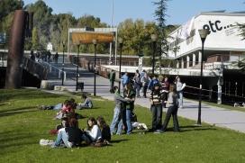 Campus de la UAB a Cerdanyola, caracteritzat per l'abundància de gespa, arbres i animals (Font: UAB)
