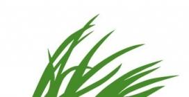Logotip de la Fundación Biodiversidad
