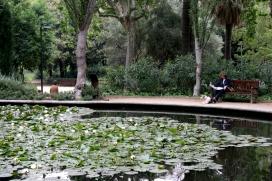 L'art de visitar un jardí: el Turó Park