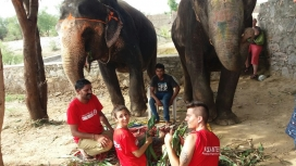Voluntariat de Cooperating Volunteers amb elefants. Font: CV