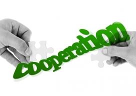 Cooperació - Font: pixabay.com