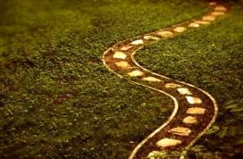 Imatge d'un camí, al·legòrica del creixement personal