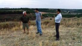 Accionatura en un projecte de custòdia als terrenys pròxims a l'aeroport de LLeida (imatge:accionatura)