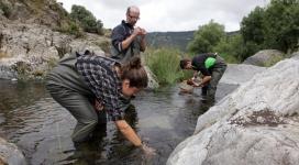 L'Associació Cen i els projectes de custòdia fluvial a les muntanyes de Prades (imatge:assocCen)