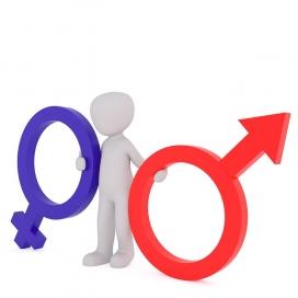 Masculí i femení