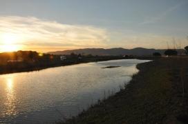 La llacuna de la Murtra, inclosa com a zona especial de protecció per a les aus, ZEPA (imatge: SOSDeltaLlobregat)