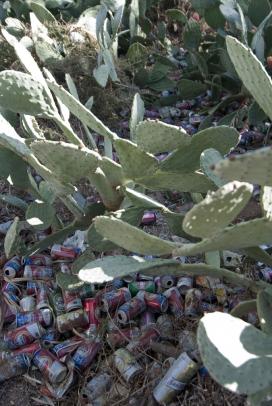 Fotografia de deixalles d'envasos en un entorn natural
