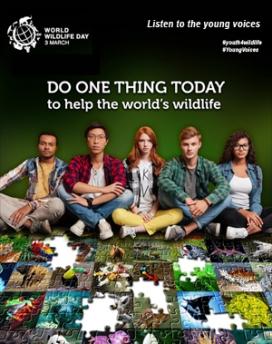 Cadascuna de les nostres accions pot ser decisiva per a la conservació o la desaparició d'una espècie (imatge: wildlifeday.org)