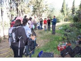 Durant la Verdinada es podrà participar a diversos tallers, com el d'horticultura urbana (imatge: lluiosdegracia.cat)
