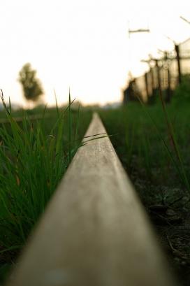 Línia. Dirigir_ArchaB_Flickr
