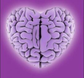 El paper de la intel·ligència emocional en el lideratge.
