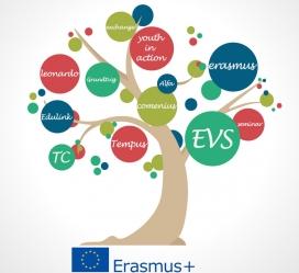 Arbre que representa els projectes reeplaçats per Erasmus+