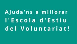 Escola d'Estiu del Voluntariat - Foto: DGACC