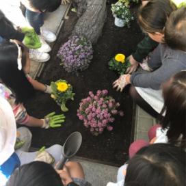 Espai Ambiental treballa des d'una perspectiva comunitària