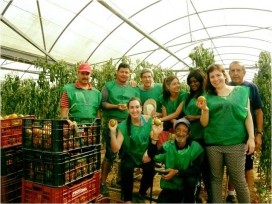 Espigoladors recuperen fruites i verdures dels camps, amb la col·laboració de voluntaris i voluntàries espigoladors (imatge: espigoladors)