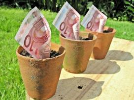 Bitllets de deu euros dins tres testos amb terra.Font: Images_of_Money (flickr)