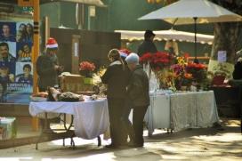 Festa de la Pagesia (Vilatenim, Figueres, 4 de desembre).